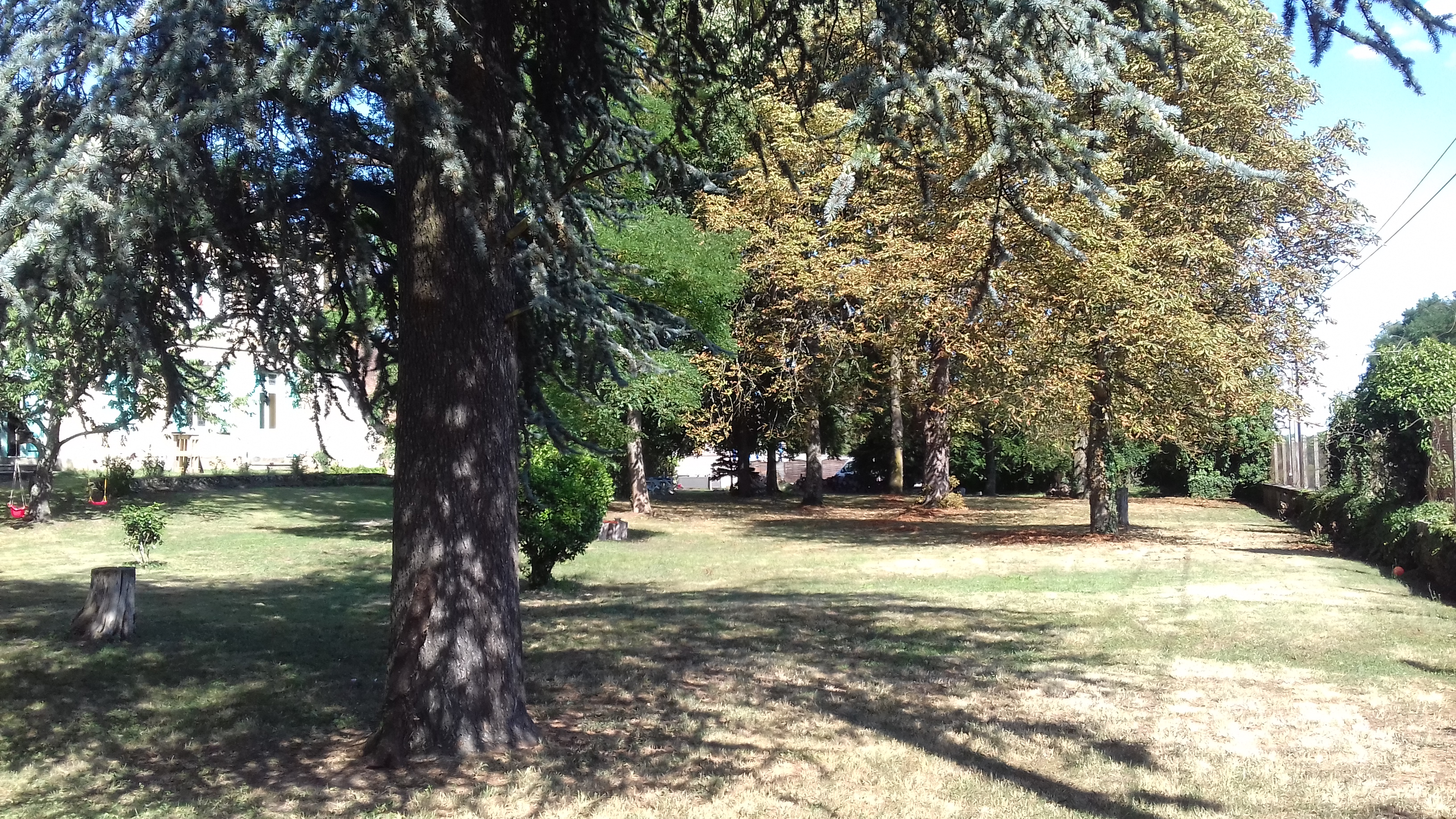 3 Roys parc